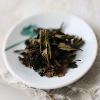 Japanese white tea from Kamo, Kyoto